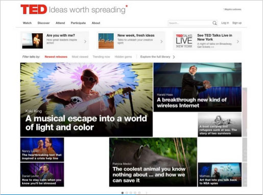Screen Grab from TED website